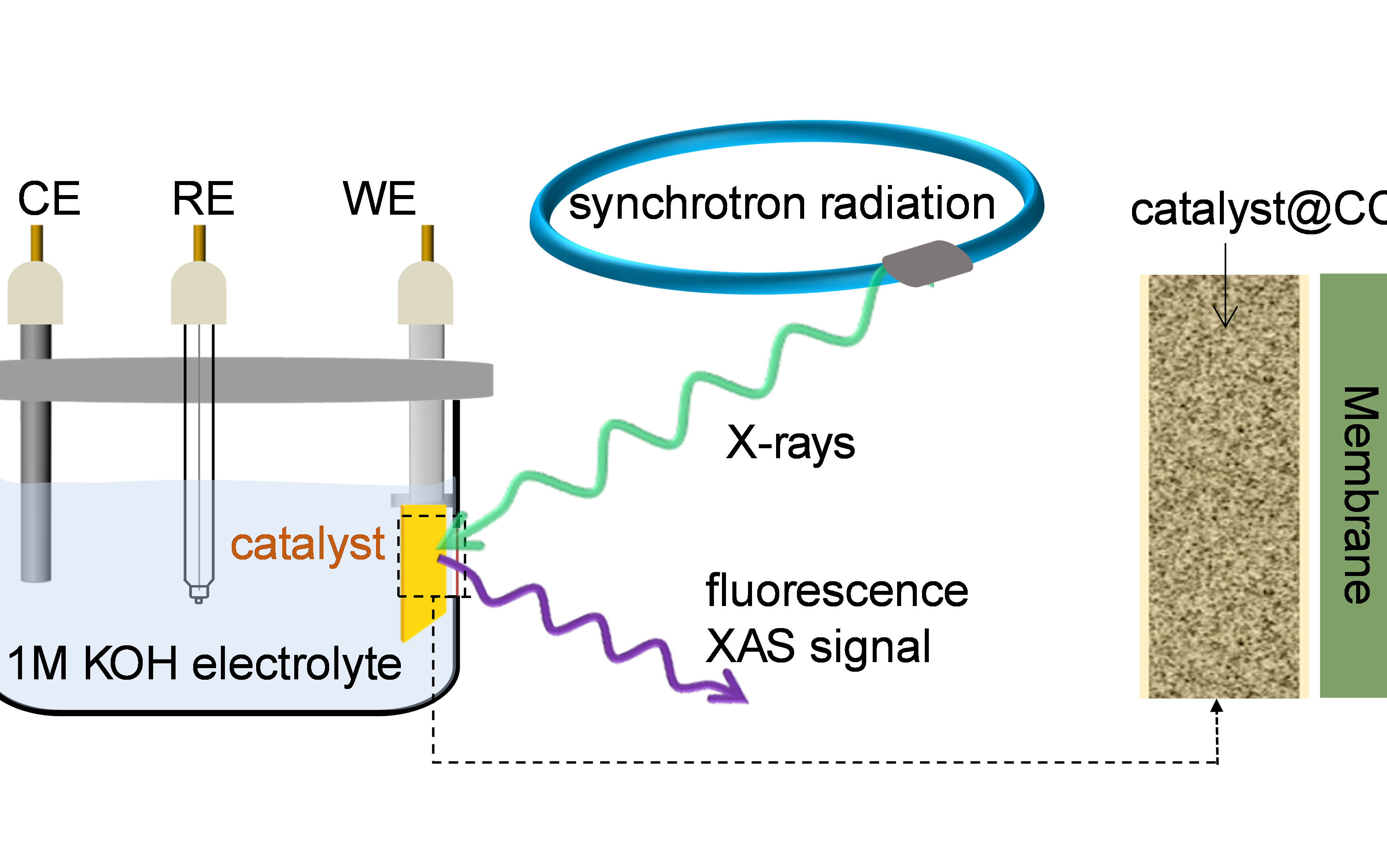 中科大Nature Catalysis:原位同步辐射揭示电催化真实反应活性位点!