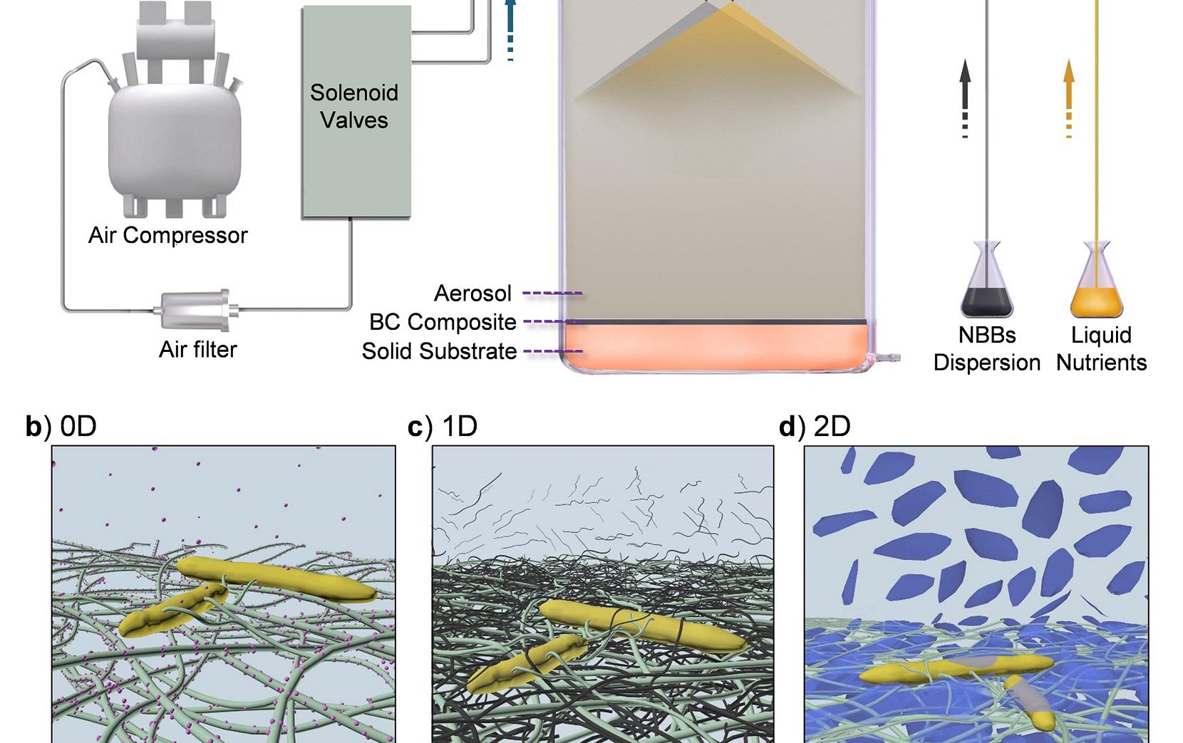 中科大俞书宏团队:生物合成宏观尺度功能纳米复合材料!