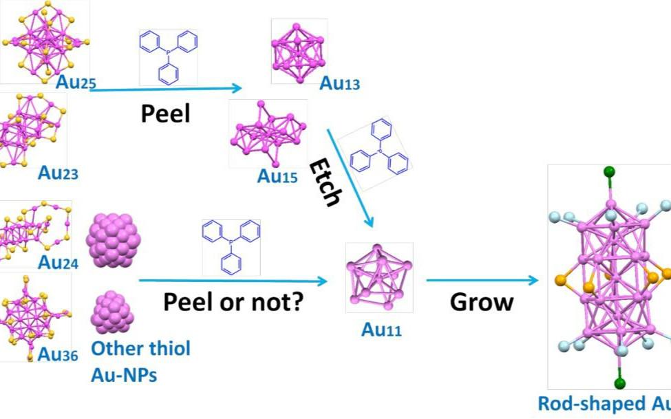 伍志鲲团队:三苯基膦--巯基保护的金纳米粒子的统一转换器