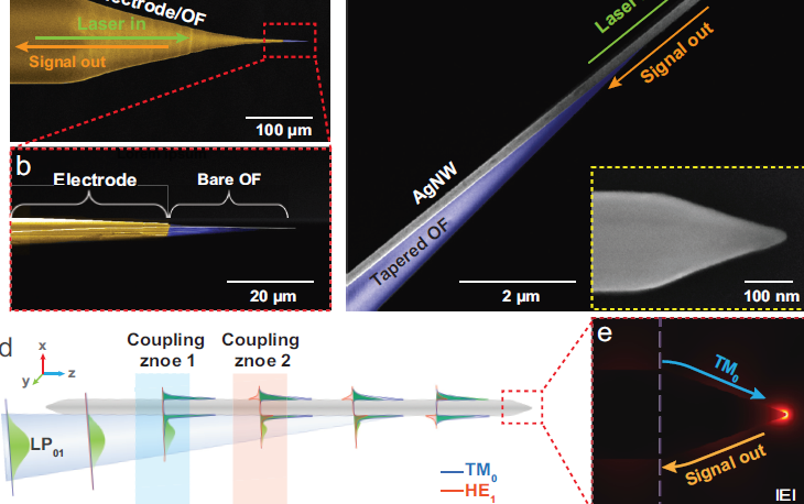 三十年来重大突破:光学转化效率提高2个数量级,近场光学纳米显微镜实现无透镜针尖增强拉曼成像!