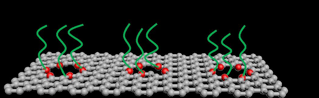 功能化单层石墨烯膜,超高通量捕集CO2