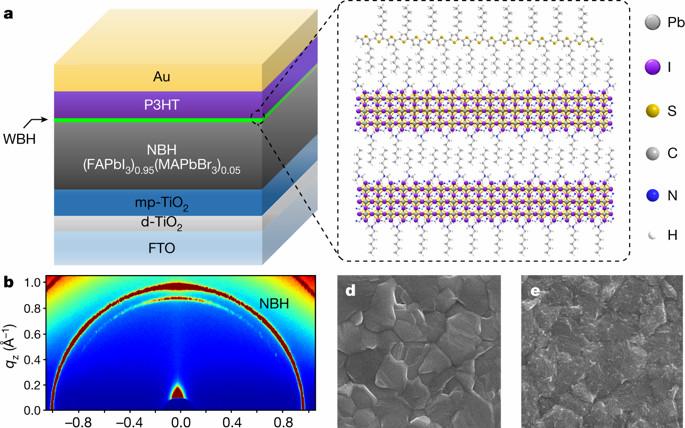 从最新几篇Science和Nature,谈钙钛矿的原位稳定