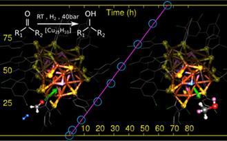 纳米团簇做催化:路在何方?