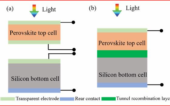 同质结vs异质结?钙钛矿/硅叠层电池中底电池的选取