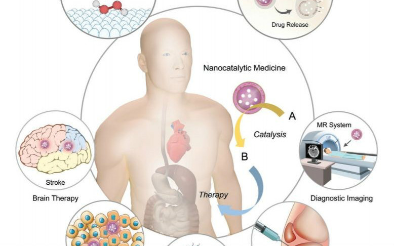 这篇肿瘤治疗的文章,为什么发表在Nature Catalysis?