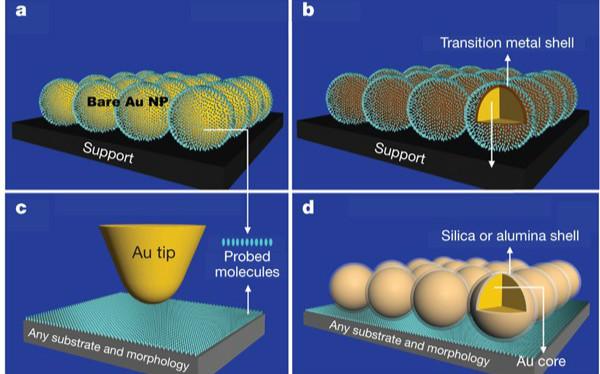 SERS:每秒成像800000次!第一次,看见表面原子在移动!