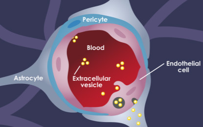 纳米生物医学前沿每周精选丨0916-0922