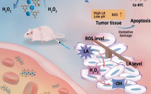 纳米生物医学前沿每周精选丨0930-1006