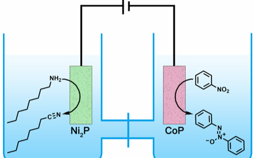 CoP电催化合成氧化偶氮、偶氮和胺类芳香化合物 | NSR研究论文