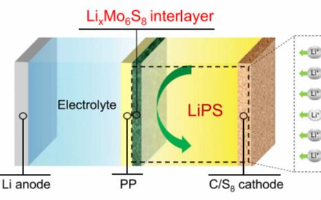 索鎏敏/李巨Matter: 通过抑制硫的迁移率实现高性能Li-S电池