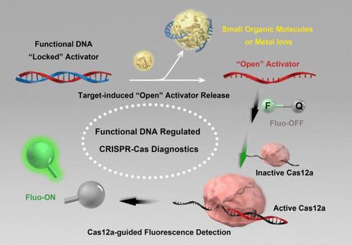 接连发表Nature Mater.,Nature Biotech.和3篇JACS,DNA纳米技术最新发展趋势