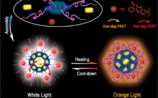 唐本忠/张春JACS:多色可调聚合物纳米粒子用于活细胞温度传感