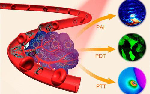 李景虹院士JACS: 原子级纳米环进行光声成像和PTT/PDT联合治疗