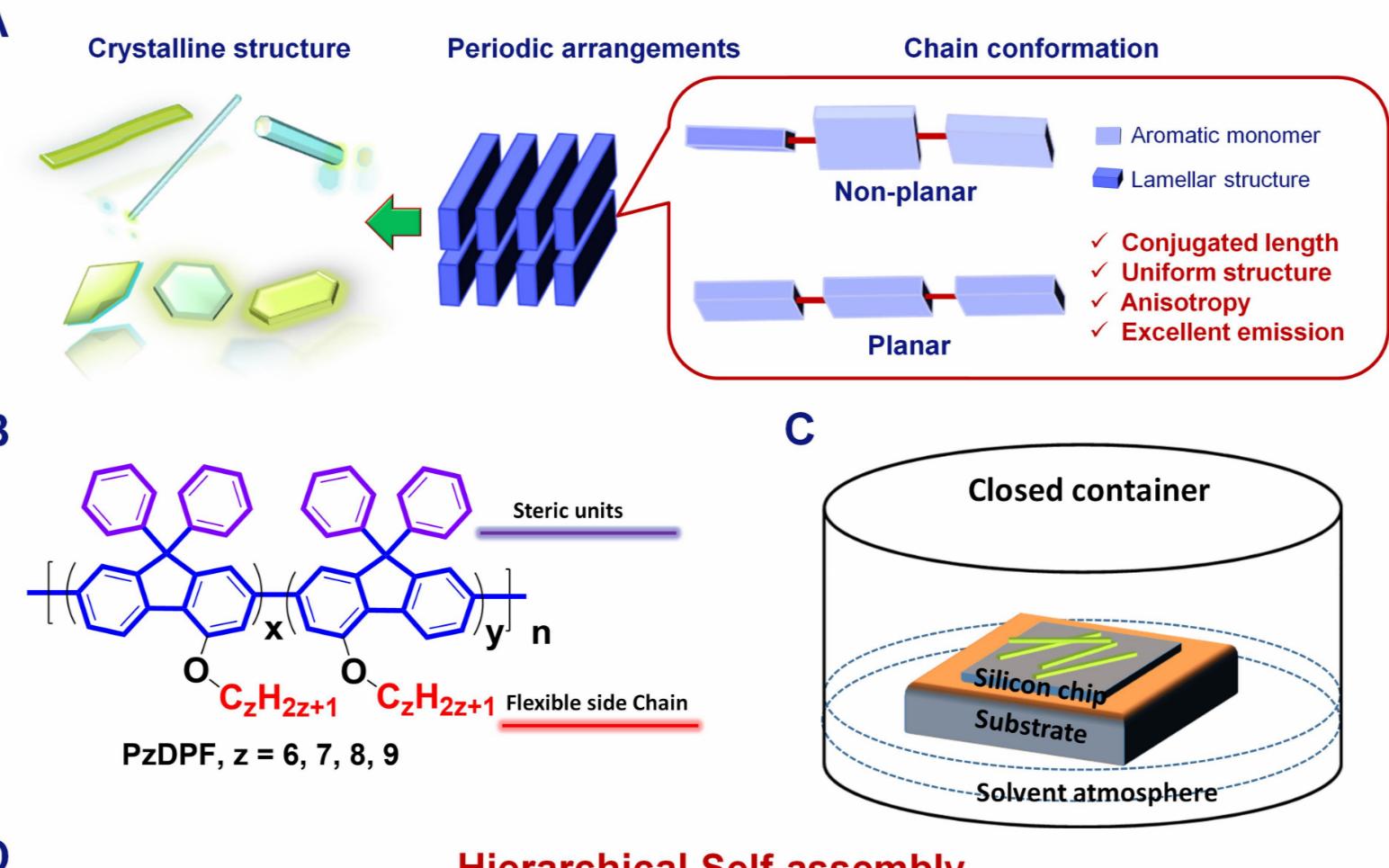 CRPS:共轭聚合物多级有序结构—构象有序化增强发光