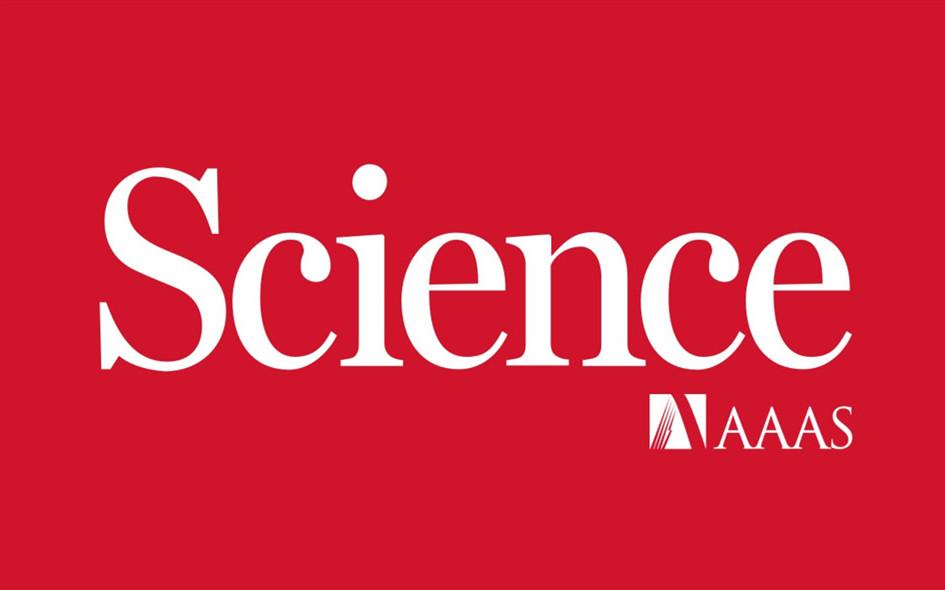 Science正刊子刊同时发文,看鲍哲南、赵选贺如何玩转导电聚合物!