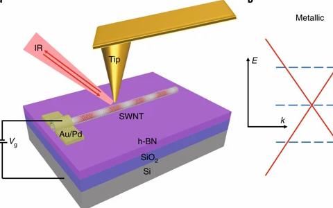 王枫Nature Materials:在半导体碳纳米管中,发现可电调控的等离体激元