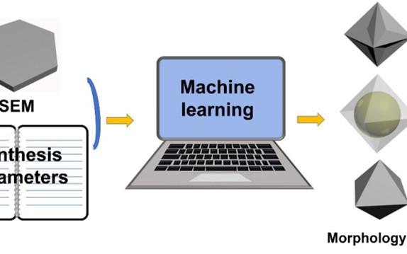 厦门大学汪骋/周达Matter:机器学习,MOFs纳米晶形貌调控的最强大脑