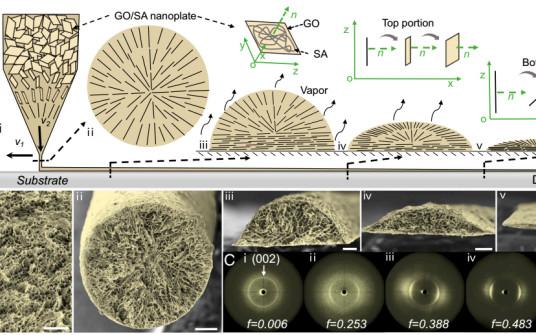 清华大学张莹莹PNAS:3D打印离子神经电极