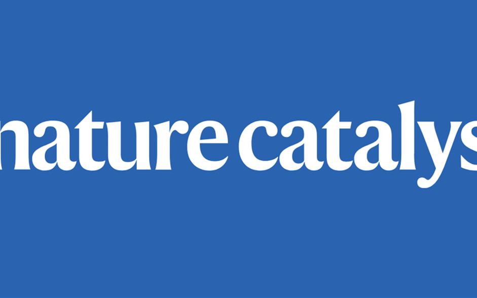 Nature Catalysis官宣:高水平催化研究指南 !