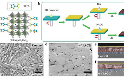 5天发表JACS和AEM,南开大学刘永胜团队在二维钙钛矿电池连续取得新进展!