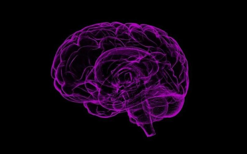 """Science子刊:无论大小分子!新型药物递送颗粒利用神经递质作为进入大脑的""""护照""""!"""