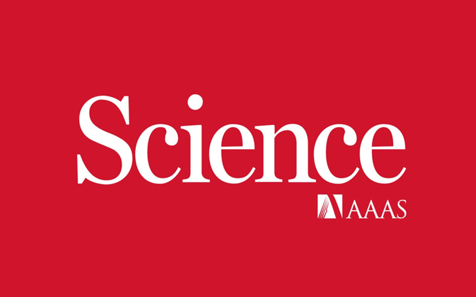 钯催化剂今日Science