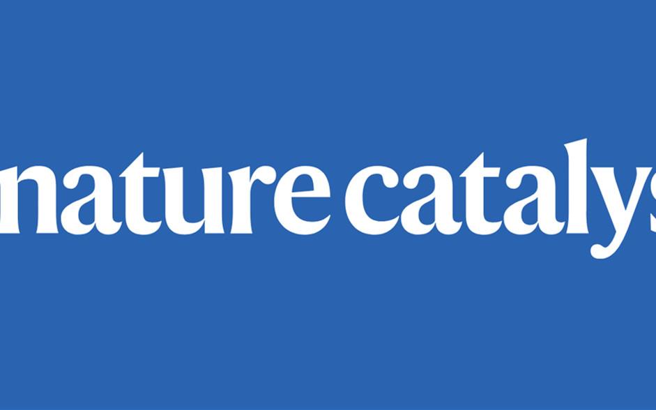 Nature Catalysis: 剑指光催化!